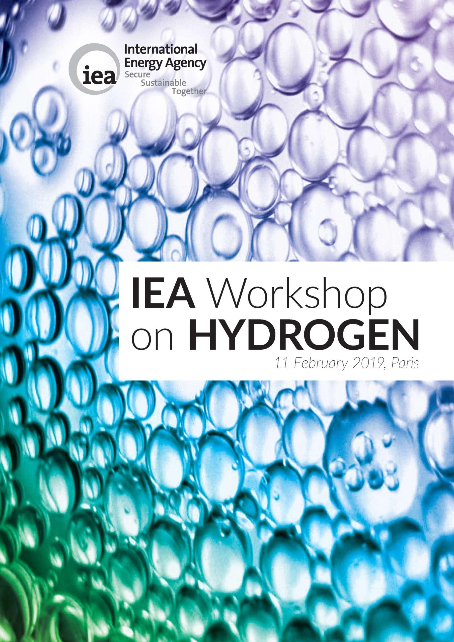 IEA Workshop on Hydrogen