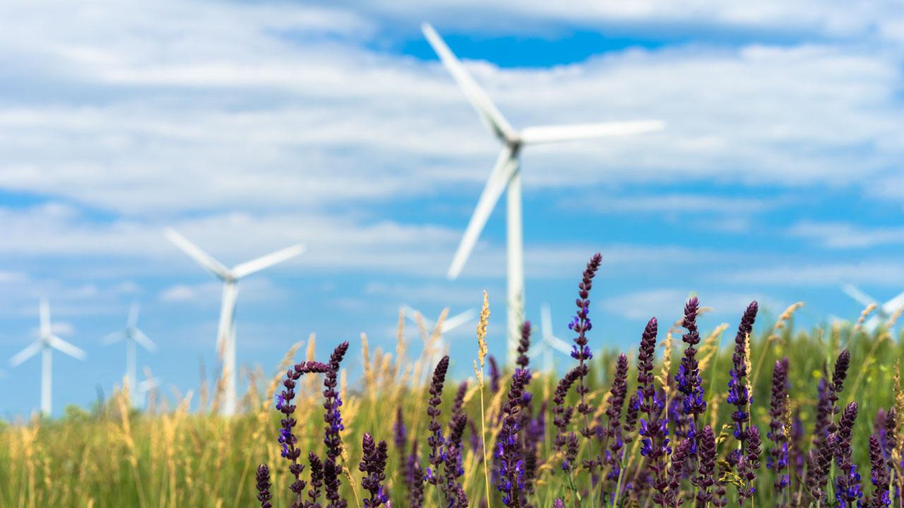 Idrogeno verde, Enel ed Eni si alleano: primo impianto entro due anni